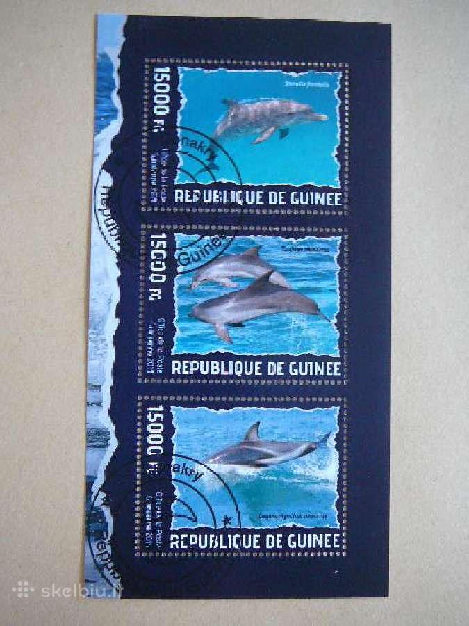Delfinai #gui18