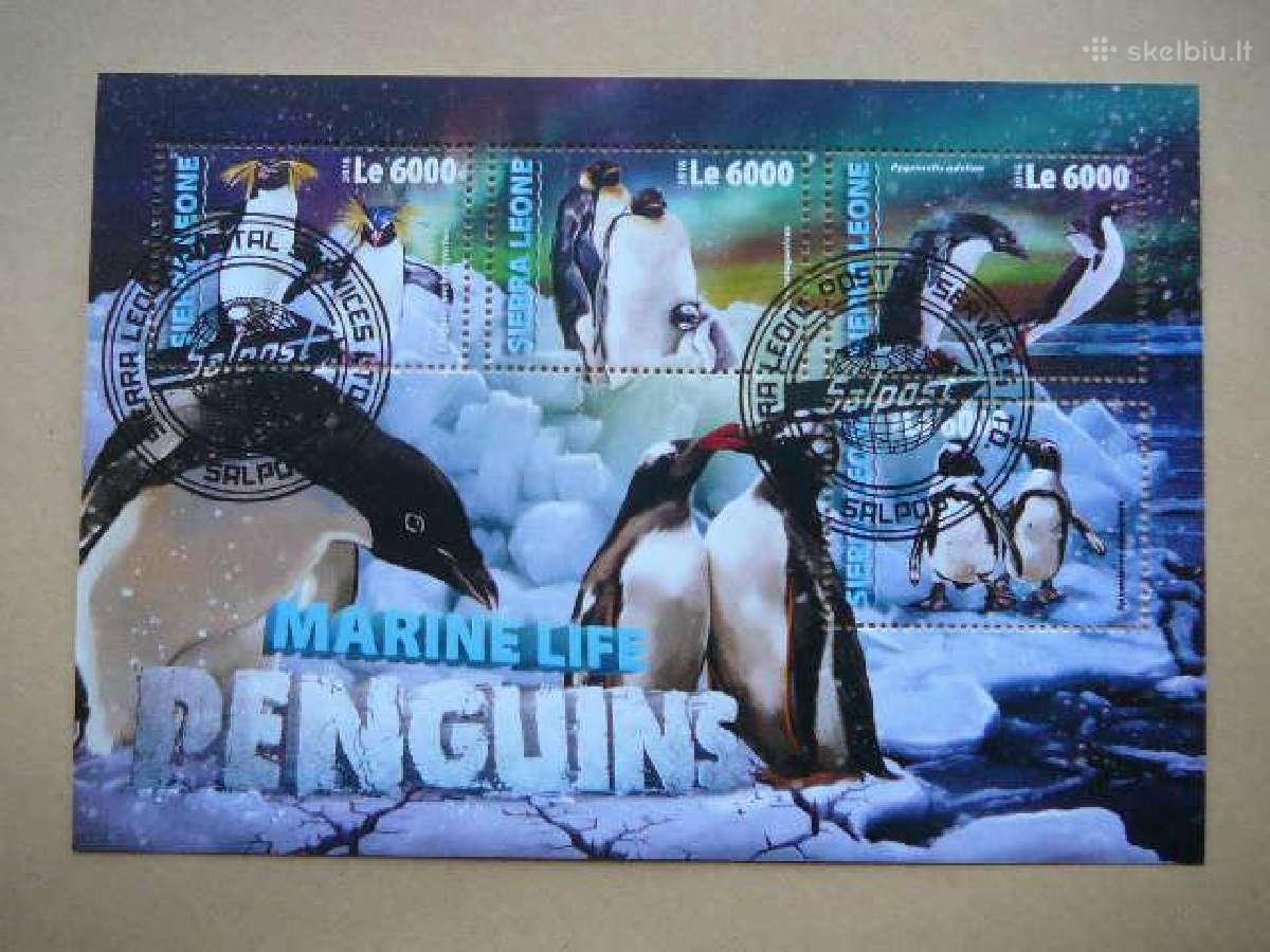 Pingvinai #sl118