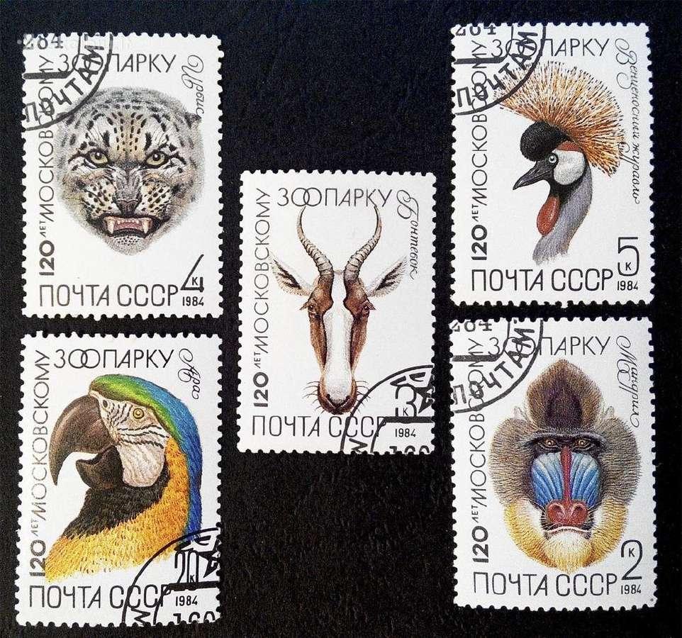 1984m CCCP Fauna pilna serija
