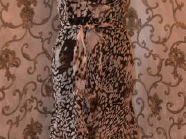 Nauja grazi tigrine suknele su dirzeliu vasarai 38
