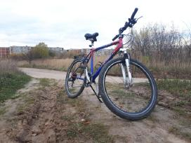 Puikus asfalto ir misko keliuku dviratis