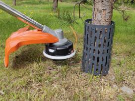 Medžių kamienų apsauga Plastbort Treemex
