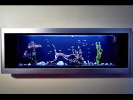 Daugiafunkcinis akvariumas