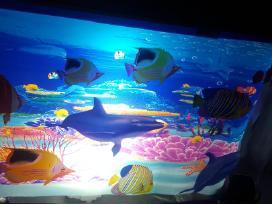 Led lempa akvariumas