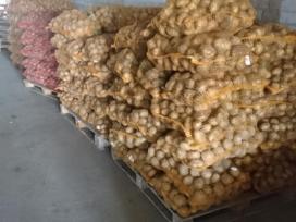 Bulvės (sertifikutos) dideliais kiekiais - nuotraukos Nr. 3