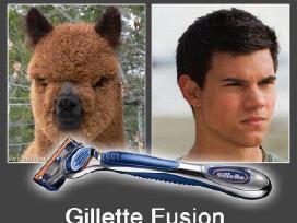 Didžiausias Gillette pasirinkimas Lietuvoje! - nuotraukos Nr. 4