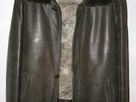 Žieminė odinė vyriška striukė