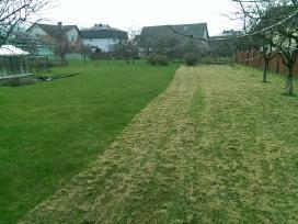 Reguliarus žolės pjovimas, vejos prieziura - nuotraukos Nr. 2
