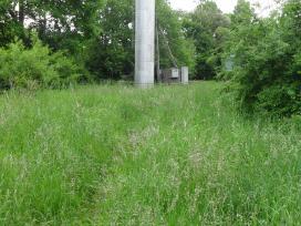 Reguliarus žolės pjovimas, vejos prieziura - nuotraukos Nr. 4