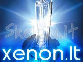 Xenon D2s xenonai lempute 5e led angel eyes D1s