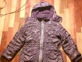 Patogi mergaitiška striuke violetinės spalvos