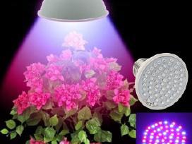 5w Augalų auginimo lempa