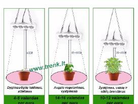 Augalų auginimo lempa