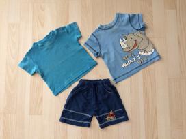 Marškinėliai, kelnės, šortai 74 - 80 cm 5 vnt. - nuotraukos Nr. 3