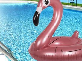 Pripučiamas flamingas - ratas