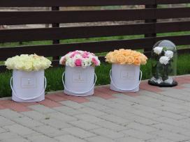 Gėlių dėžutės, gėlių pristatymas Klaipėdoje