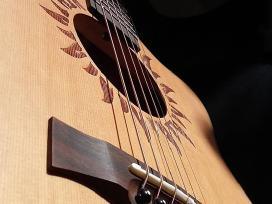 Įvairios Gitaros