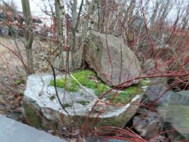 Paminkliniai akmenys