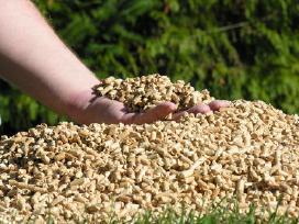 Medžio pjuvenų granulės,briketai.