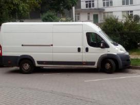 Mikroautobusu nuoma nuo8€,traliuko paslaugos,pigu
