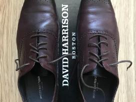David Harrison batai